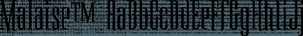 Malaise™ font family by MINDCANDY