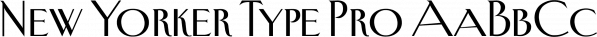 New Yorker Type Pro font family by Wiescher-Design