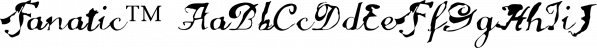 Fanatic™ font family by MINDCANDY