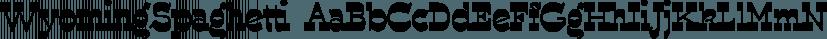 WyomingSpaghetti font family by Ingrimayne Type