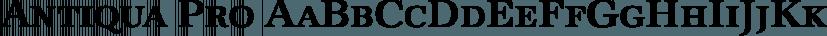 Antiqua Pro font family by SoftMaker
