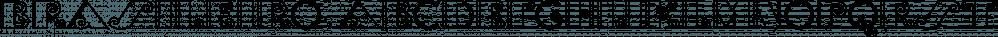 Brasileiro font family by CastleType