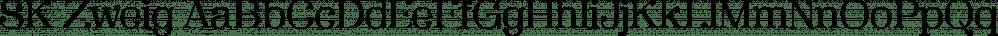 SK Zweig font family by Salih Kizilkaya