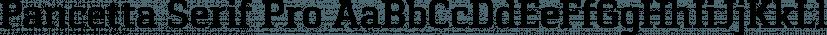 Pancetta Serif Pro font family by Mint Type