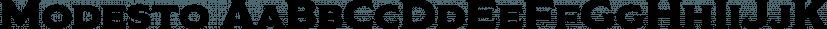 Modesto font family by Parkinson Type Design