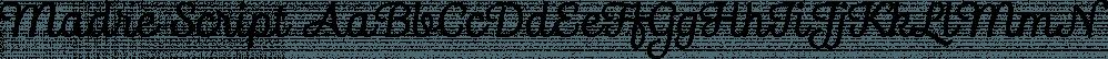 Madre Script font family by Typefolio Digital Foundry