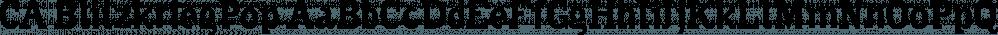 CA BlitzkriegPop font family by Cape Arcona Type Foundry