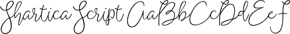 Shartica Script font family by Area Type Studio