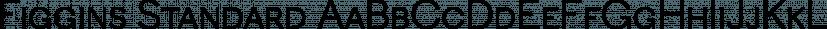 Figgins Standard font family by Shinntype