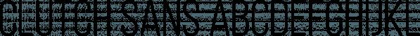 Clutch Sans font family by Studio Buchanan