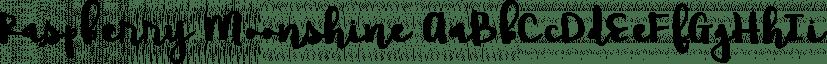 Raspberry Moonshine font family by Brittney Murphy Design