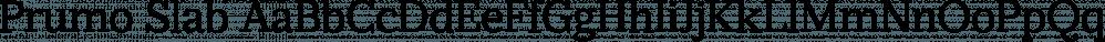 Prumo Slab font family by DSType