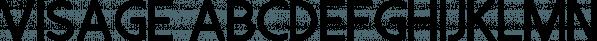 Visage font family by Tugcu Design Co