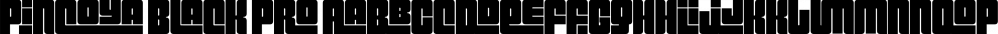 Pincoya Black Pro font family by Latinotype