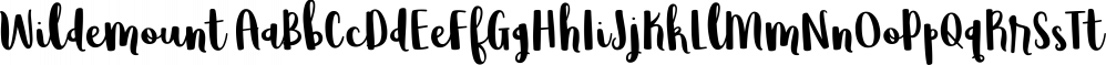 Wildemount font family by Brittney Murphy Design