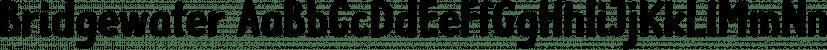 Bridgewater font family by GRIN3 (Nowak)