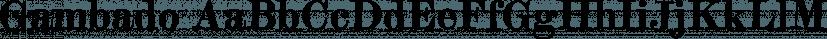 Gambado font family by Shinntype