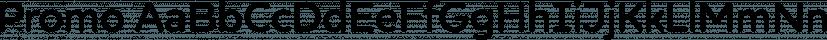 Promo font family by BORUTTA