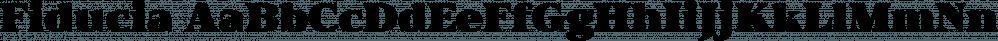 Fiducia font family by Typogama