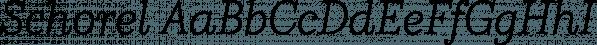 Schorel font family by Insigne Design