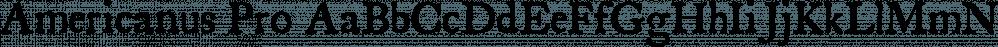 Americanus Pro font family by Aerotype