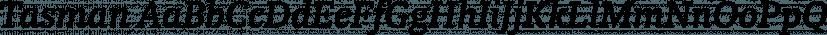 Tasman font family by ReType