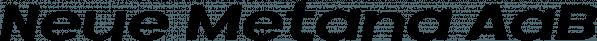 Neue Metana font family by Dirtyline Studio