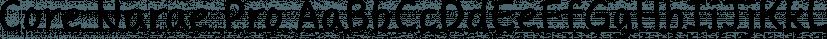 Core Narae Pro font family by S-Core