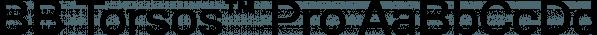 BB Torsos™ Pro font family by Bold Studio