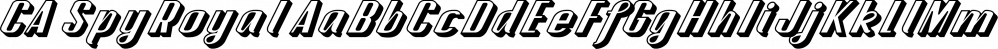 CA SpyRoyal font family by Cape Arcona Type Foundry
