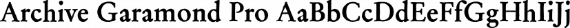 Archive Garamond Pro font family by ArchiveType