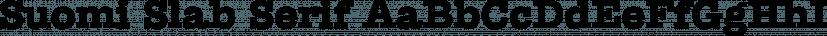 Suomi Slab Serif font family by Suomi Type Foundry