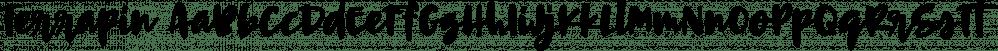 Terrapin font family by Missy Meyer
