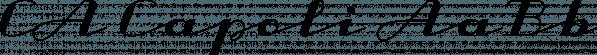 CA Capoli font family by Cape Arcona Type Foundry