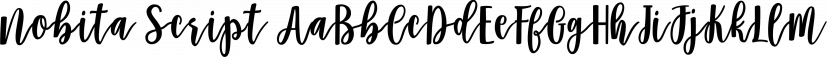 Nobita Script font family by Genesislab